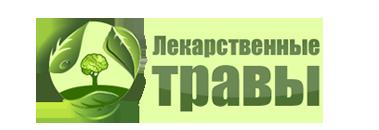 Лекарственные растения и травы: логотип сайта medicinalplants.ru в виде дерева-мозга